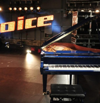 "Live on Stage: Die ""The Voice of Germany""-Finalisten auf Deutschland-Tour"